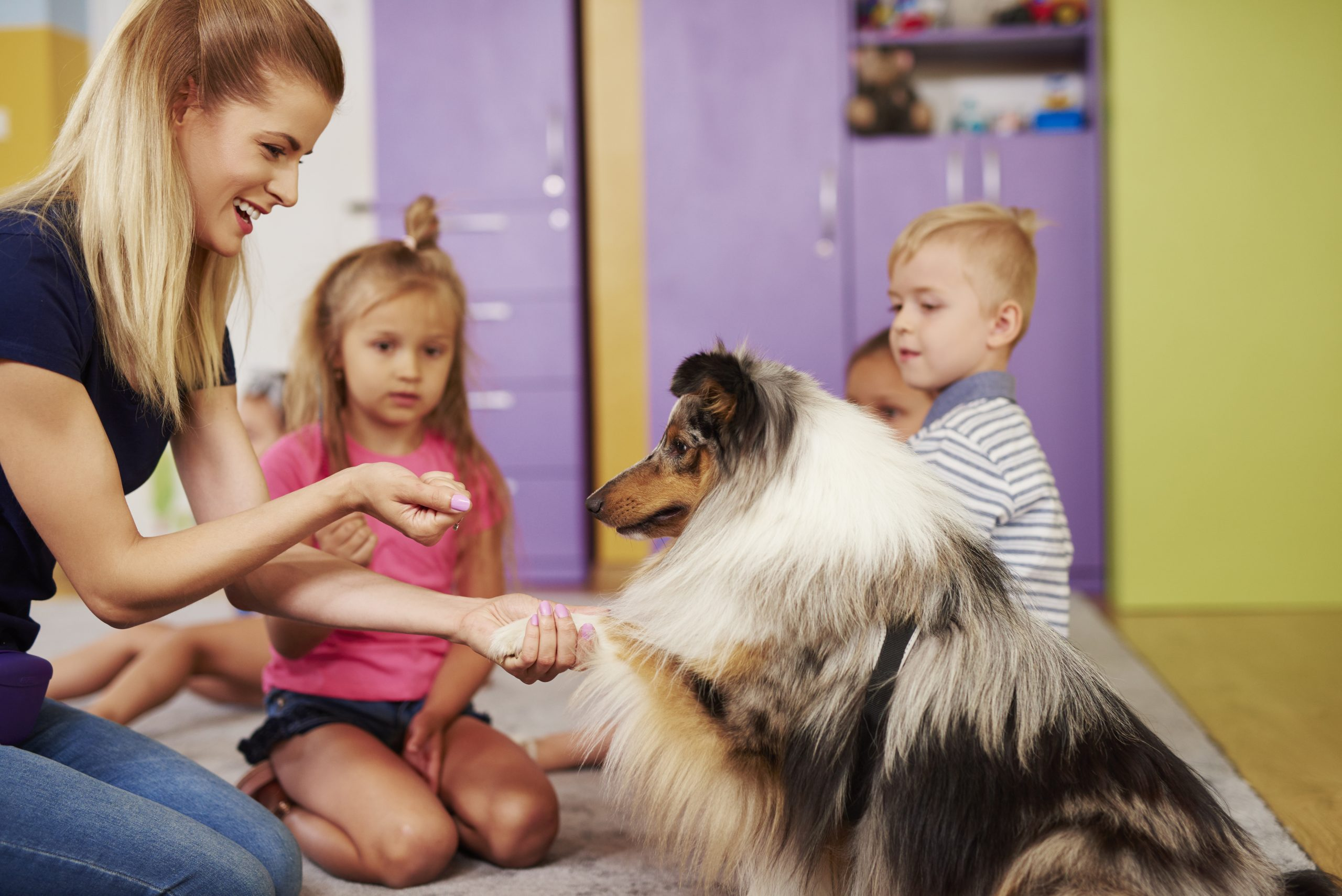 Do's & Don'ts For Greeting Dogs